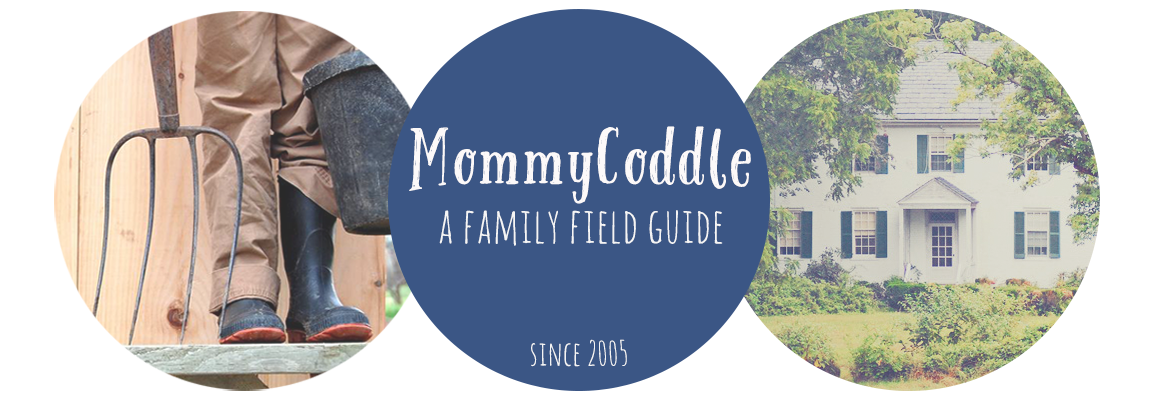 MommyCoddle