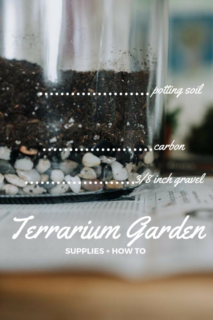 how to plant a terrarium garden